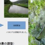 和歌山城水質浄化での継続的浄化の必要性 和歌山城西外濠の特性